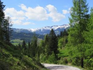 A_Wanderung VI
